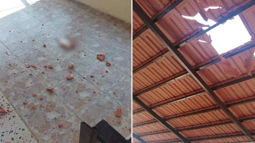 حادثة غريبة.. سمكة سقطت من فم طائر على الشرفة وتسببت بأضرار في القرميد