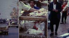 بالفيديو/ هكذا بدت بيروت حيوية جميلة بأهلها.. مشهد نادر من العام 1970 يُنشر لأول مرة
